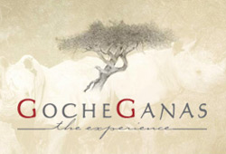 The Gocheganas Wellness Village (Namibia)