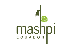 The Spa at Mashpi Lodge (Ecuador)